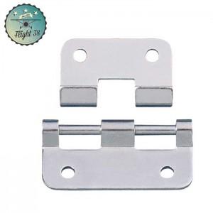 FC2251 Charnière Dégondable grande zinc
